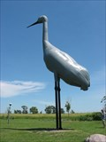 Image for World's Largest Sandhill Crane