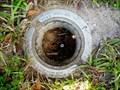 Image for DI9223(872 0226 E) - Jacksonville FL
