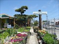 Image for Yabusaki's Dwight Way Nursery - Berkeley, California