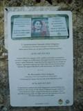 Image for PEACE - Aung San Suu Kyi 1991 - San Gimignano, Italia