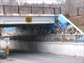 Image for The Radi'aal Encompass Underpass Mural - Toronto, Ontario