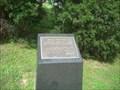 Image for Holocaust Memorial Cedar Trees - Nashville, Tn