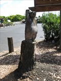 Image for Bear Carving - Santa Clara, CA