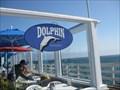 Image for Dolphin - Santa Cruz, CA