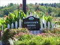 Image for Copetown Woods Golf Club