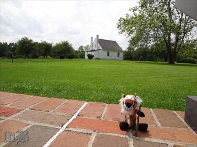 Little Bush taking a break at the Jackson Shrine.