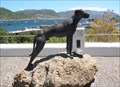 Image for Just Nuisance - Simon's Town, South Africa
