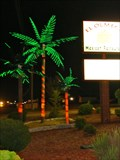 Image for El Olmeca Electric Palm Trees - Ardmore, TN