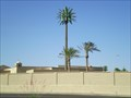 Image for Pseudopalm at Holy Cross - Mesa, AZ