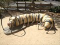 Image for Caterpillar with 7 Pairs of Shoes - Davis, CA