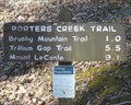 Image for Porter Creek Trail - Great Smoky Mtns Natl Park - Greenbrier, TN