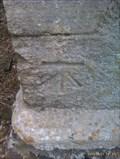 Image for Benchmark, St Andrew's, Fersfield, Norfolk