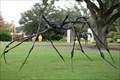Image for Spider - New Orleans, LA