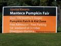 Image for Manteca Pumpkin Fair
