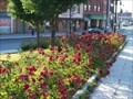 Image for Schlosser Park Rose Garden - Syracuse, N.Y.