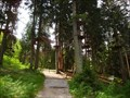 Image for LARGEST - Hochseilgarten Fulpmes, Tirol, Austria