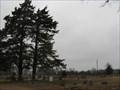 Image for HORNER - Cemetery Cassville, MO. / USA