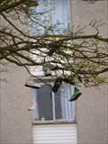 Image for Hillhead Shoe Tree - Aberdeen - Scotland - UK