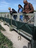 Image for Boardwalk at Boulders, Simon's Town, South Africa