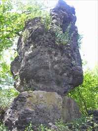 One of the unusual features on the Island Trail at Ha Ha Tonka State Park