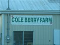 Image for Berry Picking - Cole Farm