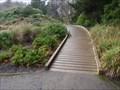 Image for Subantartic Island Walk