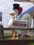 Image for Hilltop Rooster - Paynesville, Minn.
