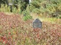 Image for Burwalde Mennonite Cemetery - Blumenort MB