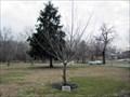 Image for Lorraine Dunlap - Lakeview Cemetery - Cinnaminson, NJ