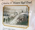 Image for Columbia and Western Rail Trail - Robson, BC