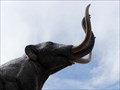 Image for Mastodon, Denver Museum of Nature and Science - Denver, CO