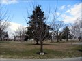 Image for Doris A. Smallwood - Lakeview Cemetery - Cinnaminson, NJ