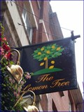 Image for The Lemon Tree - Bedfordbury, London, UK