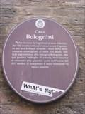 Image for Casa Bolognini - Bologna, Italy