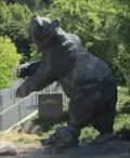 Image for Bear - Berkeley, CA