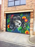 Image for Funky Ape Garage Door - Seddon, Victoria, Australia
