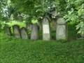 Image for židovský hrbitov / the Jewish cemetery, Rychnov nad Knežnou, Czech republic