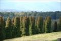 Image for RJ Hamer Arboretum - Olinda, Victoria