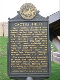 Image for Cactus Hills