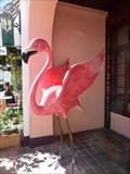 Image for Pink Flamingo  -  Miami Beach, FL