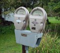 Image for Parking Meter Mailbox  -  Chester, NH
