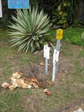 Image for Undetermined Survey Marker - Clearwater Beach, FL