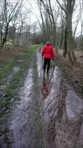 Image for Eden Viaducts walk, Cumbria