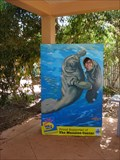 Image for Manatee Cutout - Fort Pierce, FL