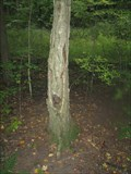 Image for Laughing Tree - Kitchener, ON