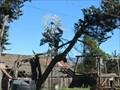 Image for Higuera St Windmill - San Luis Obispo, CA