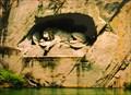 Image for Dying Lion of Luzern, Switzerland