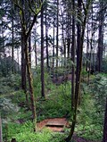 Image for Oregon Episcopal School Ropes Course - Beaverton, OR