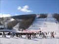 Image for Bristol Mountain Winter Resort, Canandaigua, NY