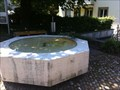 Image for Fountain at the Town Hall - Bettingen, BS, Switzerland